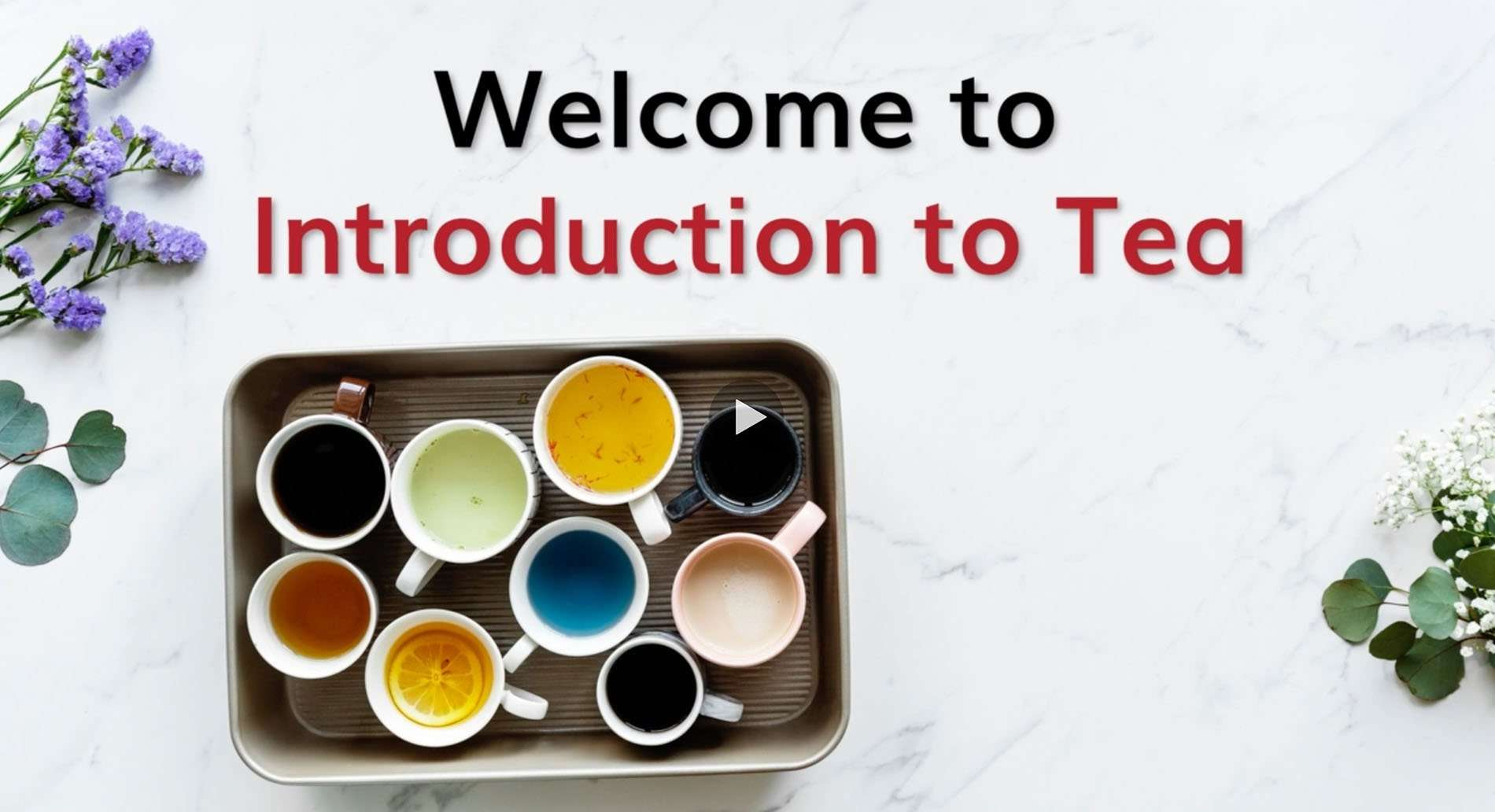 Introduction to Tea Cover